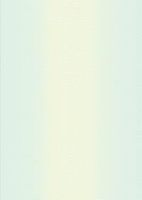 Бланк для дипломов/удостоверений, светло-зеленый (без заполнения, формат А4) Арт. БП-9