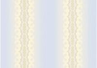 Бланк для дипломов/удостоверений (без заполнения) Арт. БП-13